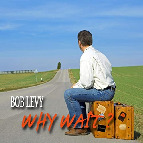 "Bob Levy's ""What Do I Do Now?"" sung by Ronny Whyte"